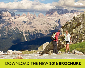 download 2016 brochure